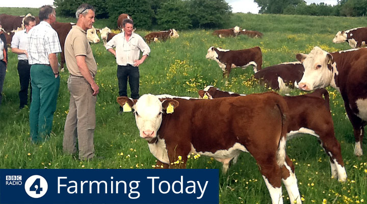 BBC Radio 4 Farming Today Whittington Lodge Farm